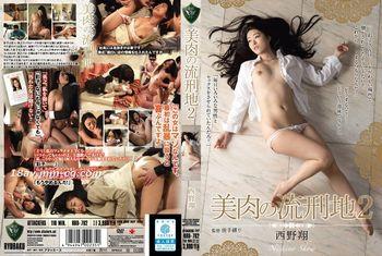 免費線上成人影片,免費線上A片,RBD-702 - [中文]美肉的行刑地2 西野翔