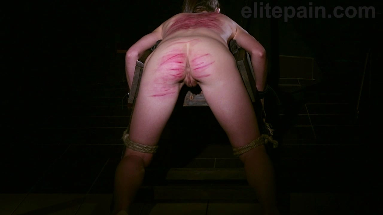 Wheel Of Pain 26 mp 4 0040