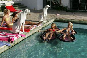 Lesbian-Orgy-Andi-in-swimming-pool-4some-%5Bx163%5D-n6xfwbmy6u.jpg