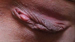 Horizontal Pussy Closeups26x07bcn2b.jpg